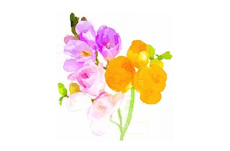 Spring pastels menu