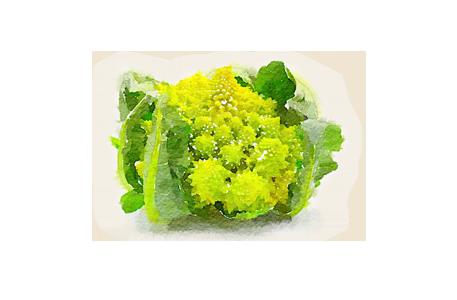 Spring menu: shades of green